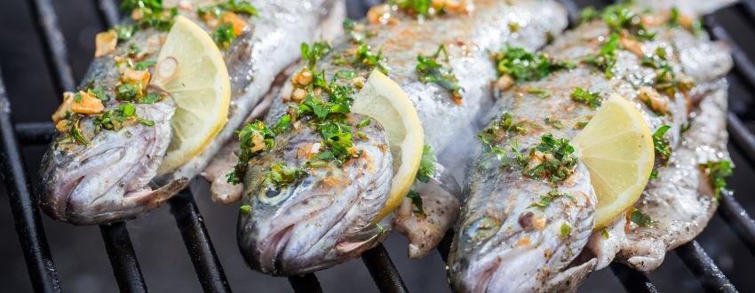 Fisch grillen – Mit diesen 5 Tipps gelingt er auch dir!